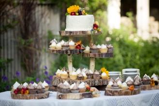 Alysha & John's Backyard Wedding